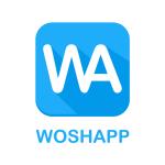 woshapp logo blå foretag